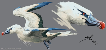 albatross bird concept art by sally gottschalk