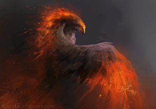 pheonix fire bird illustration by sally gottschalk